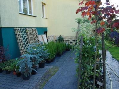 ogrodnictwo 10