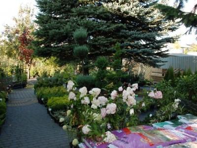 ogrodnictwo 14