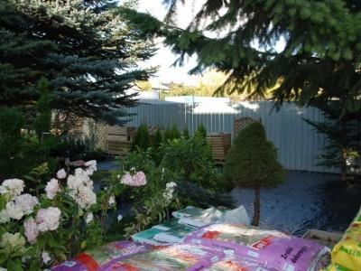 ogrodnictwo 25