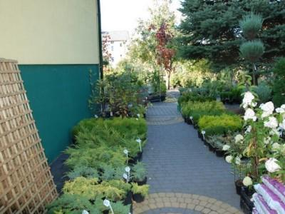 ogrodnictwo 27