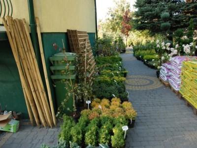 ogrodnictwo 28